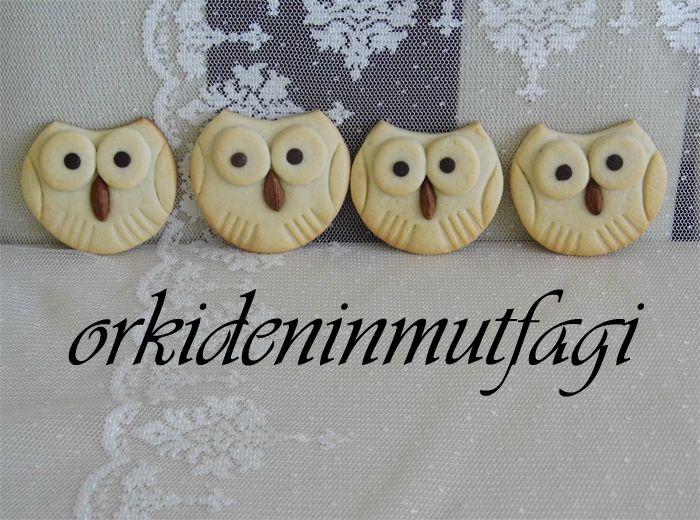 baykuş şeklinde kurabiye